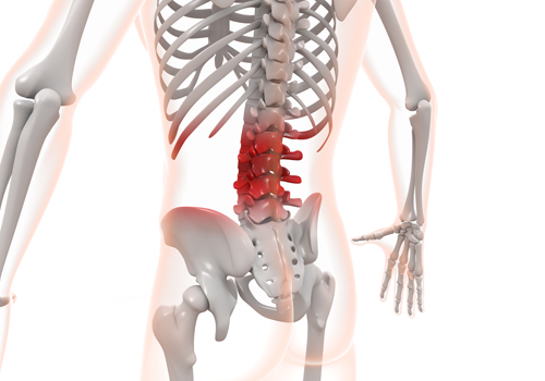 自然体の腰痛治療へのこだわり 富士吉田市 整体院 自然体